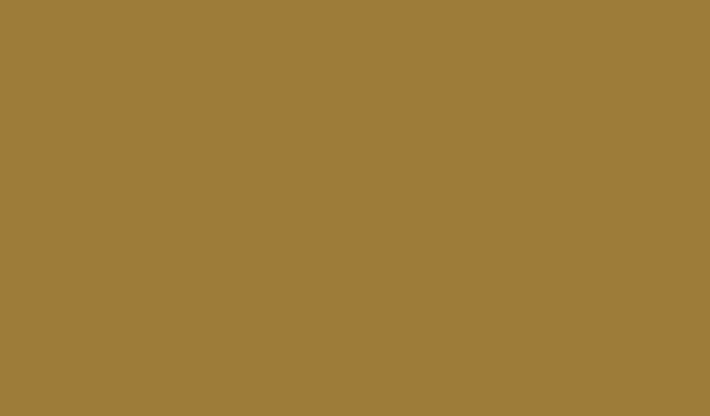 1024x600 Metallic Sunburst Solid Color Background