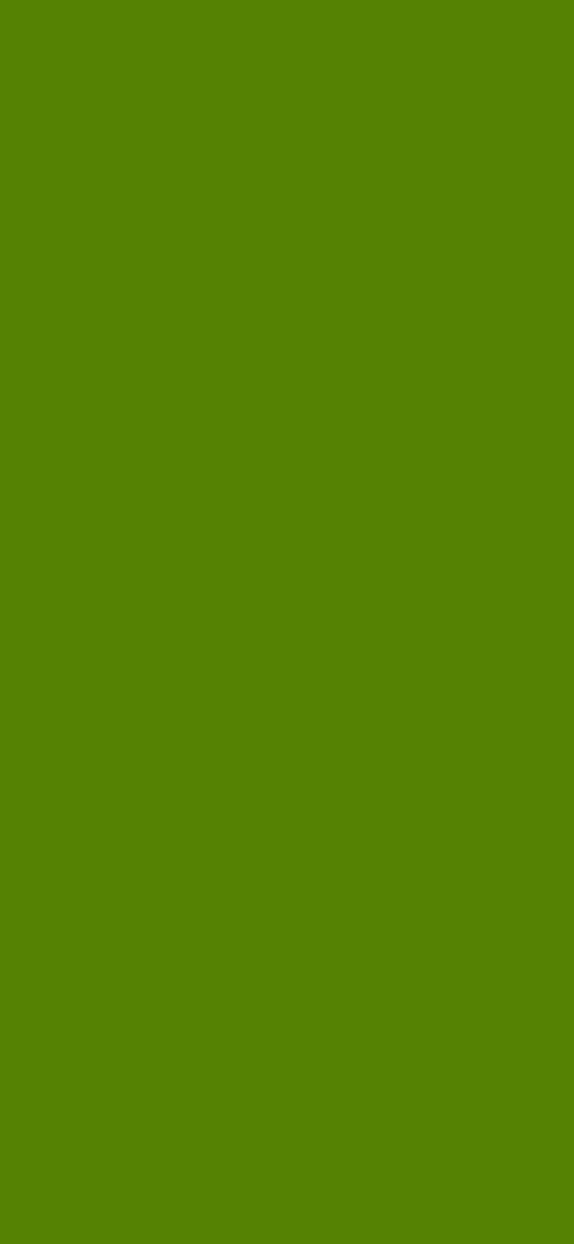 1125x2436 Avocado Solid Color Background