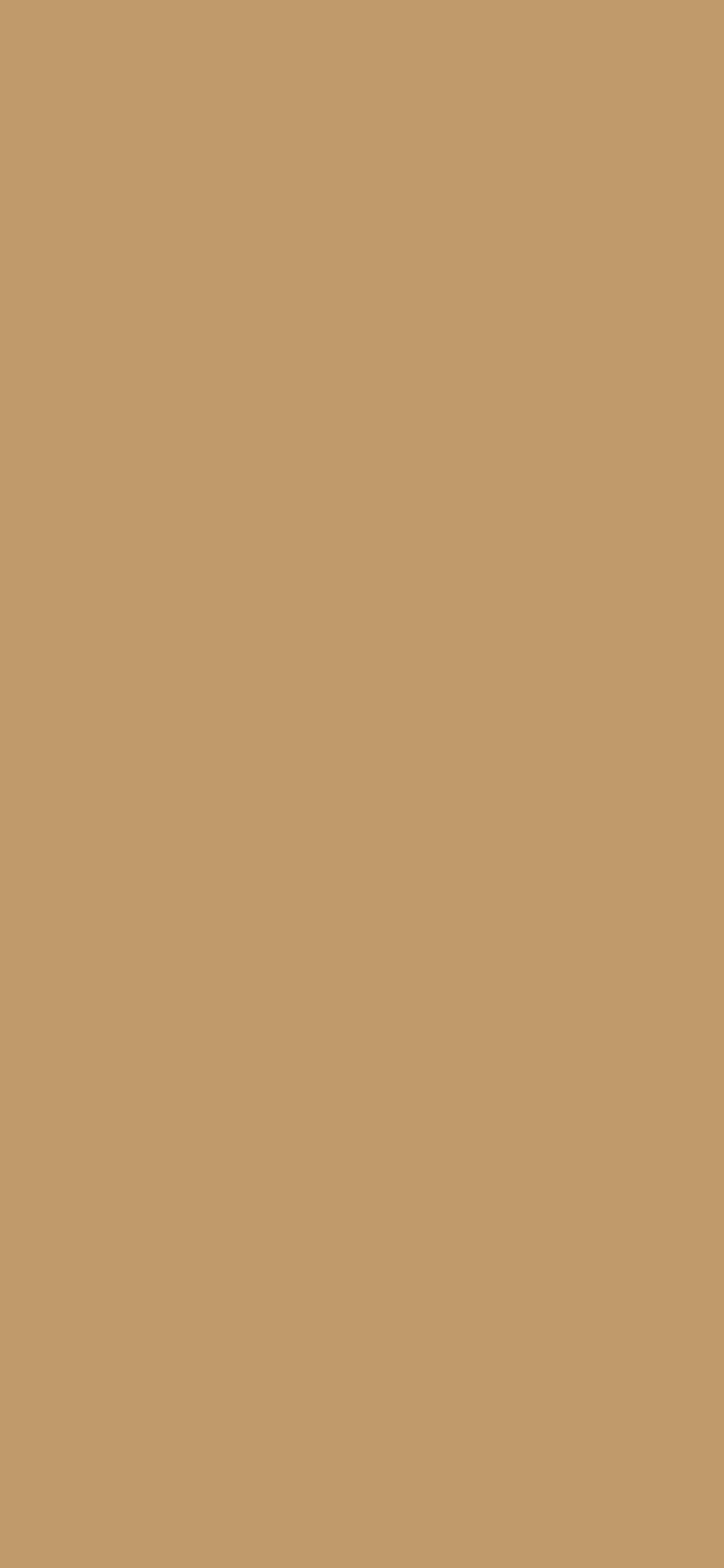 1125x2436 Camel Solid Color Background