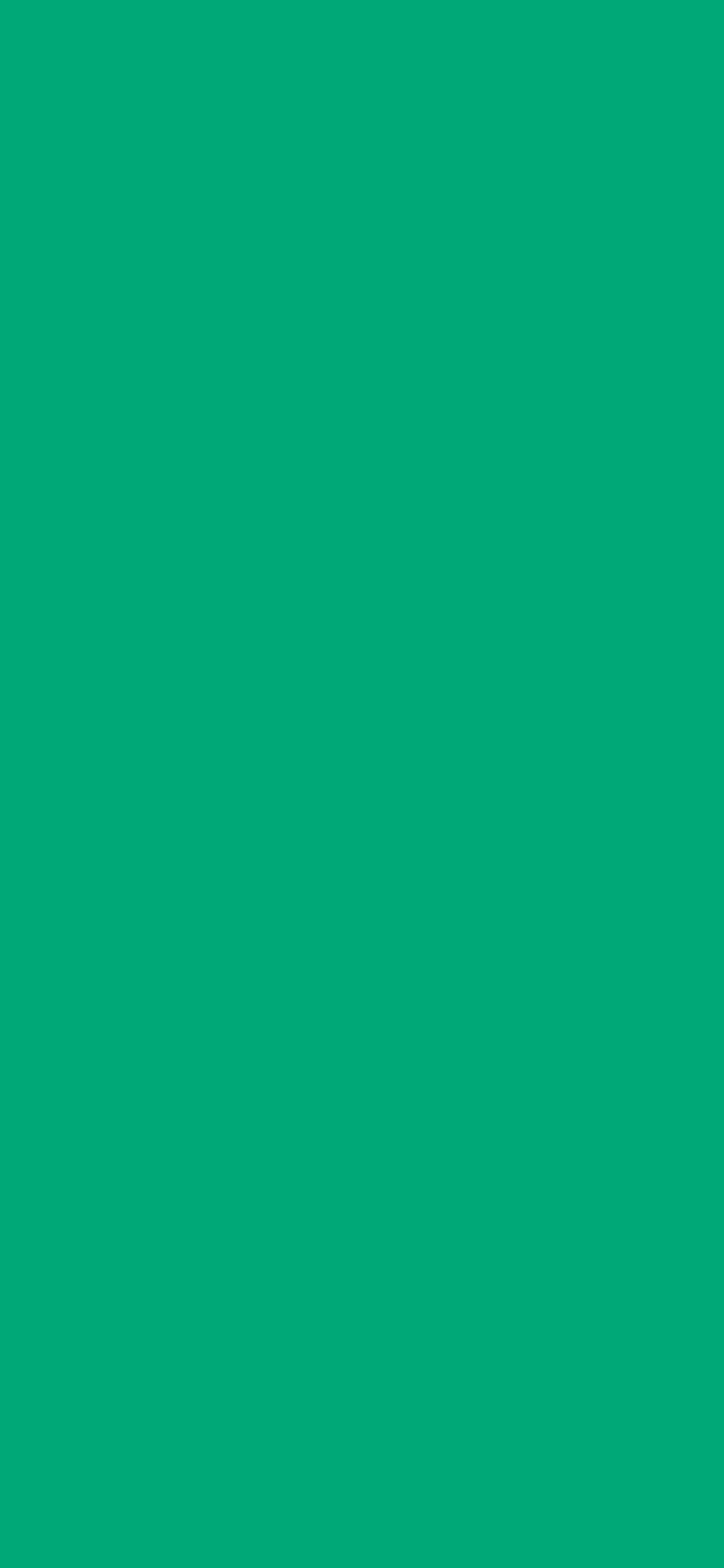 1125x2436 Green Munsell Solid Color Background