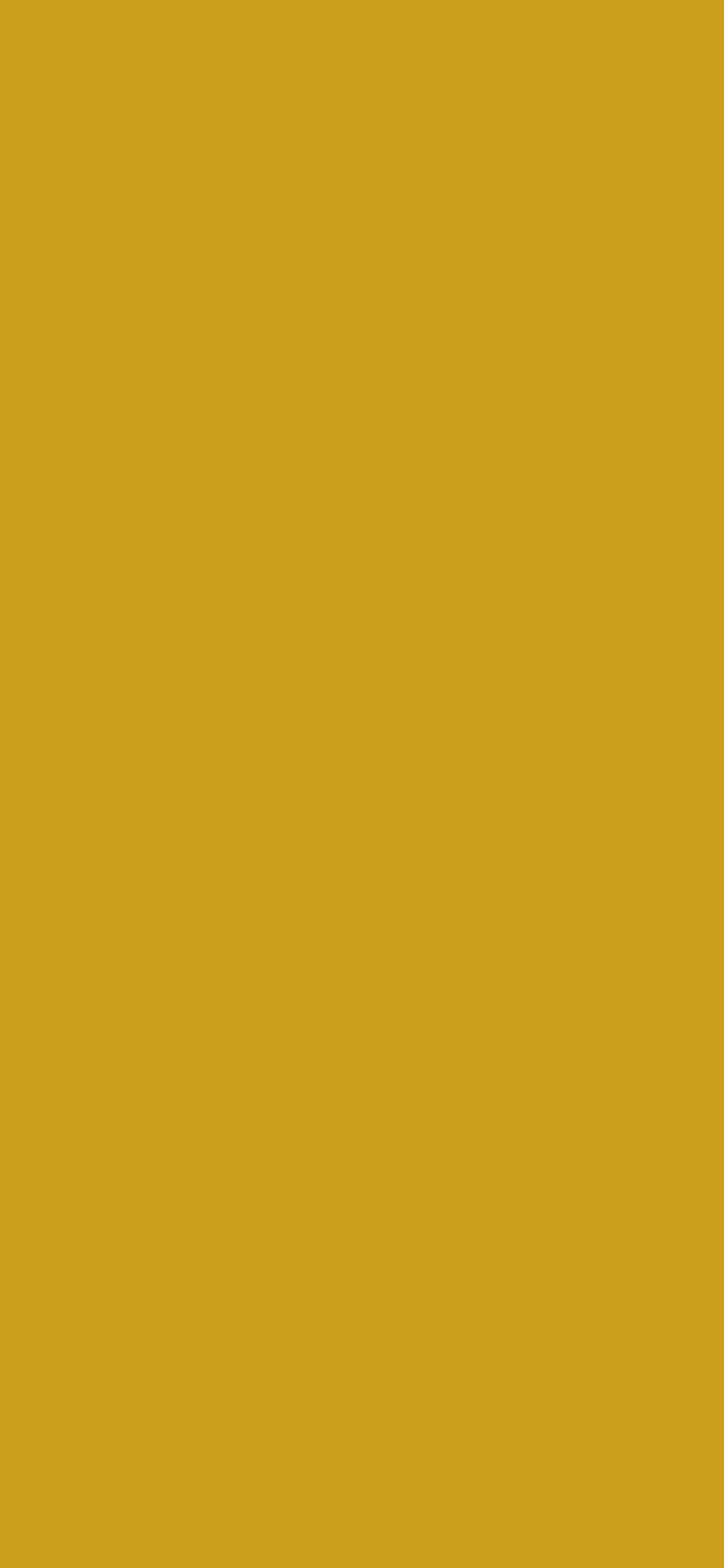 1125x2436 Lemon Curry Solid Color Background