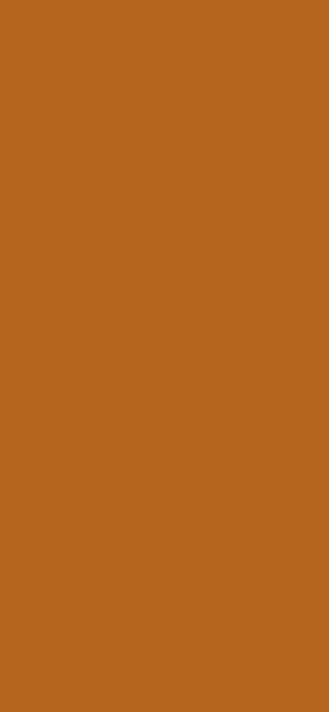1125x2436 Light Brown Solid Color Background