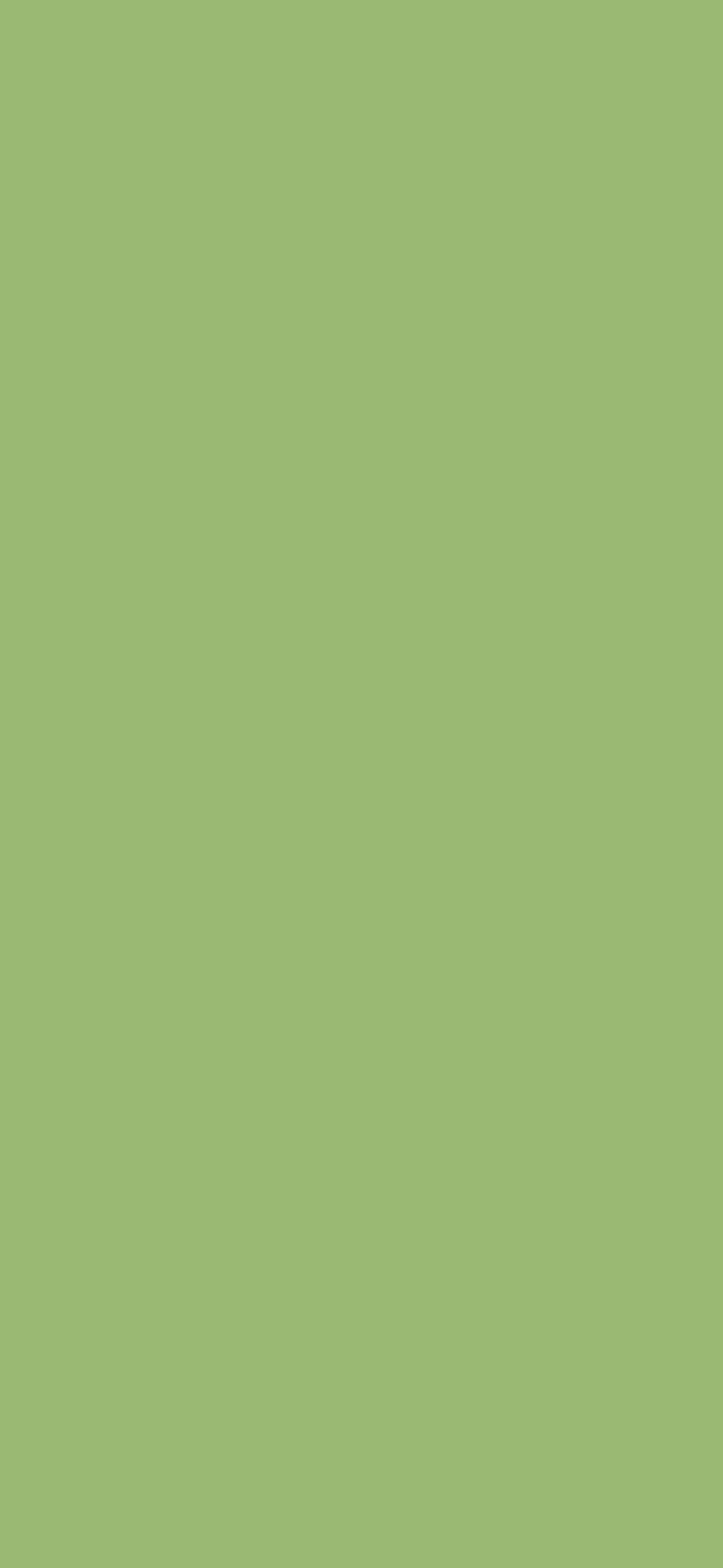 1125x2436 Olivine Solid Color Background