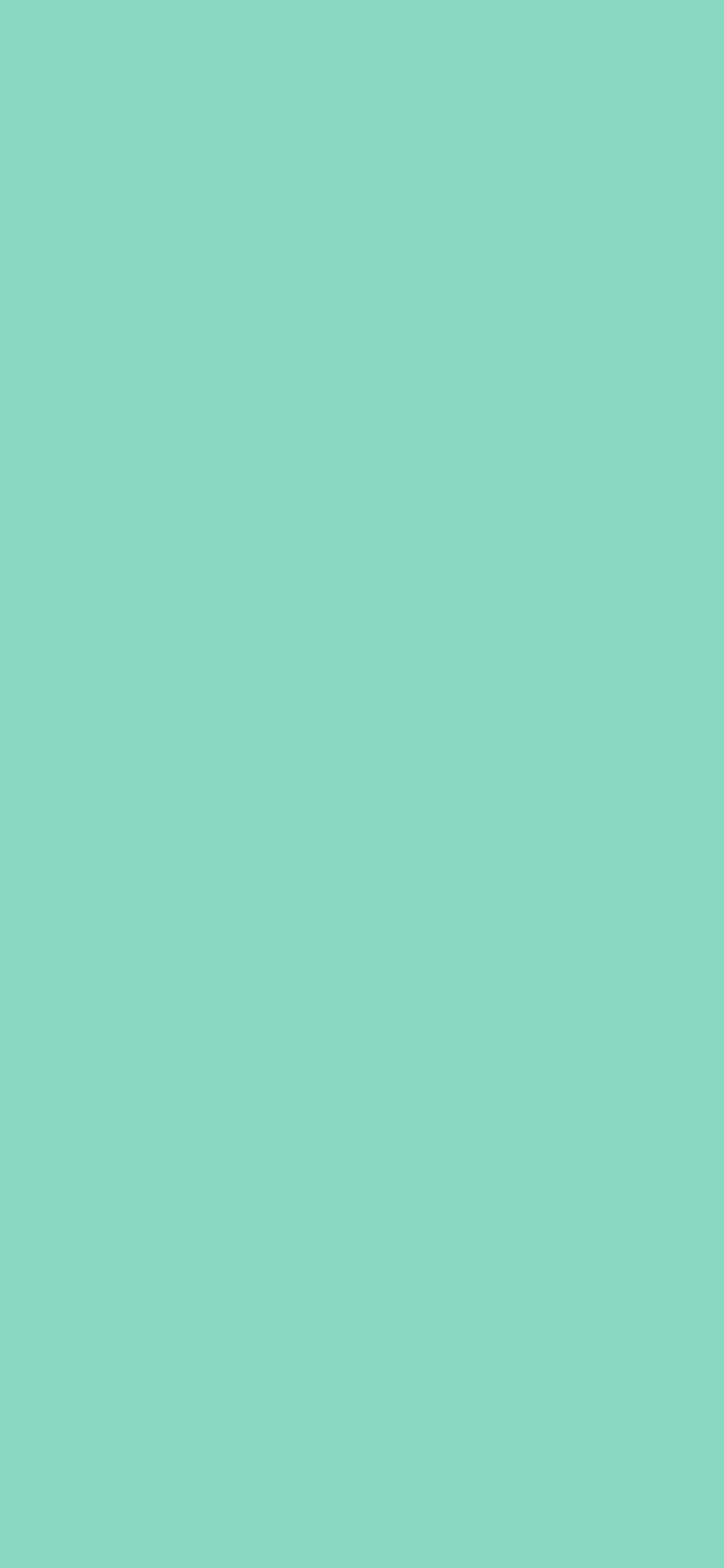 1125x2436 Pearl Aqua Solid Color Background