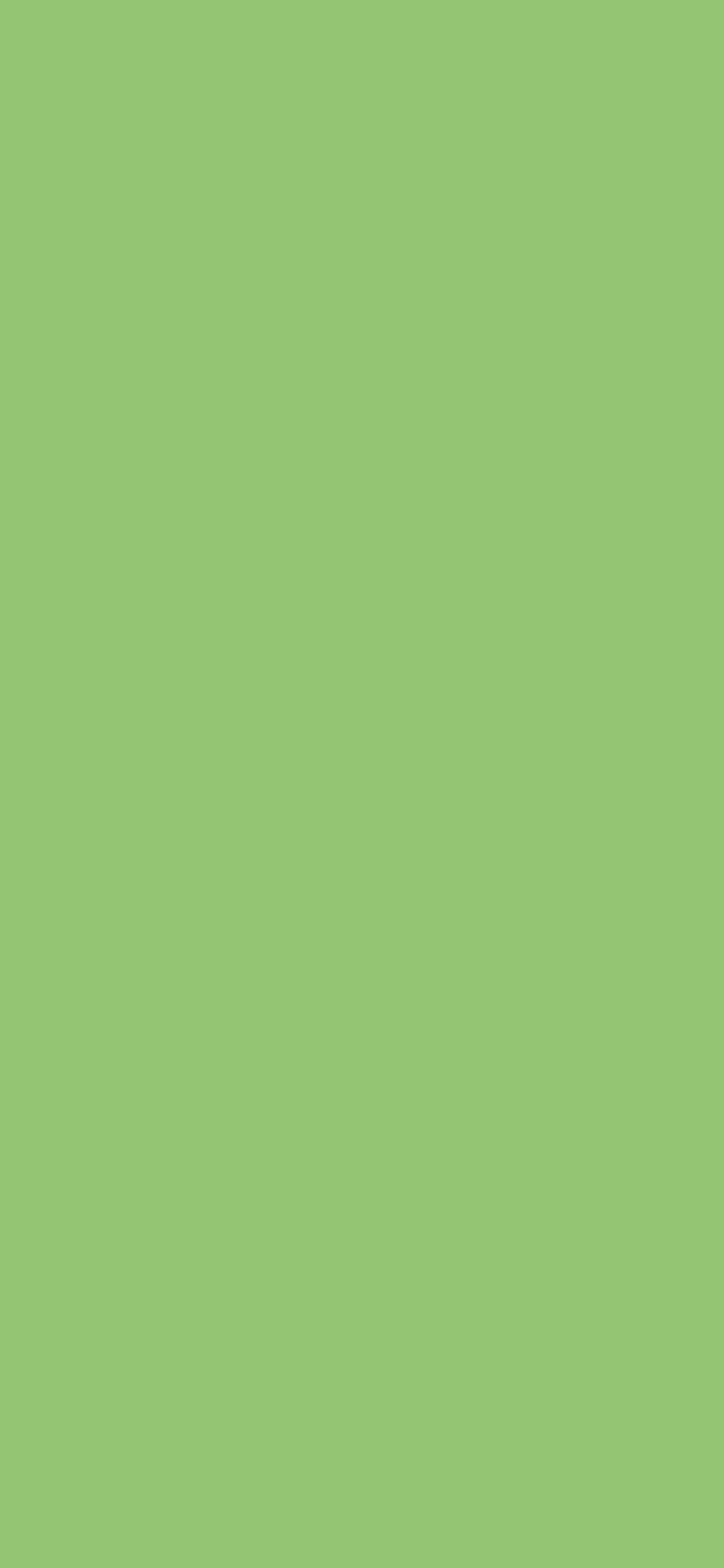 1125x2436 Pistachio Solid Color Background