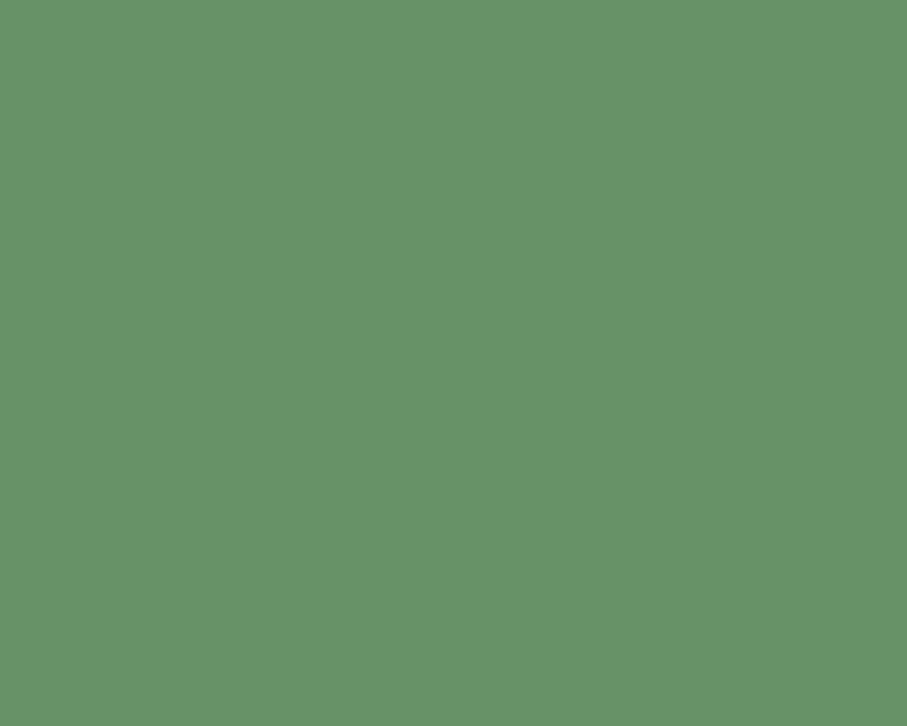 1280x1024 Russian Green Solid Color Background
