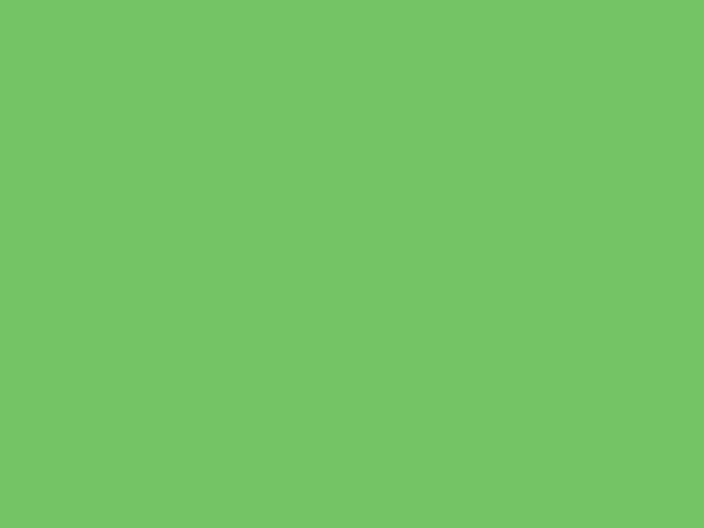 1400x1050 Mantis Solid Color Background