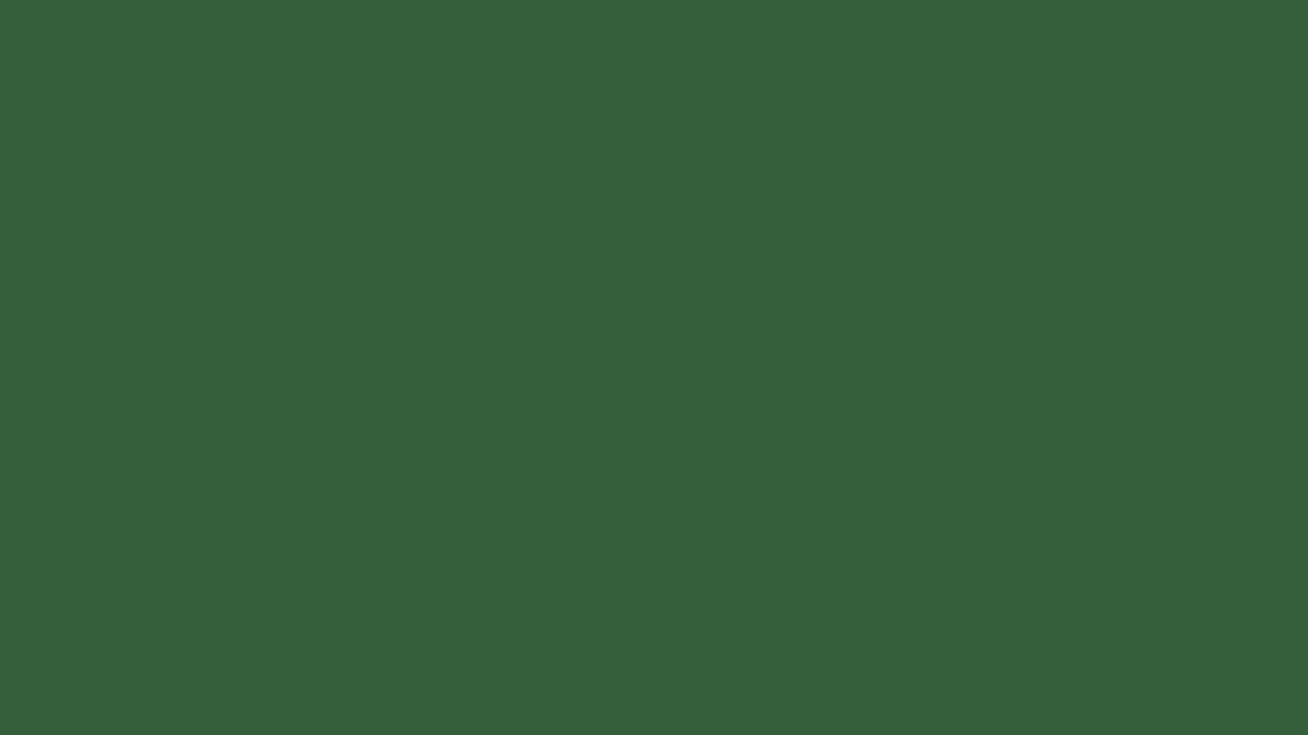 2560x1440 Hunter Green Solid Color Background