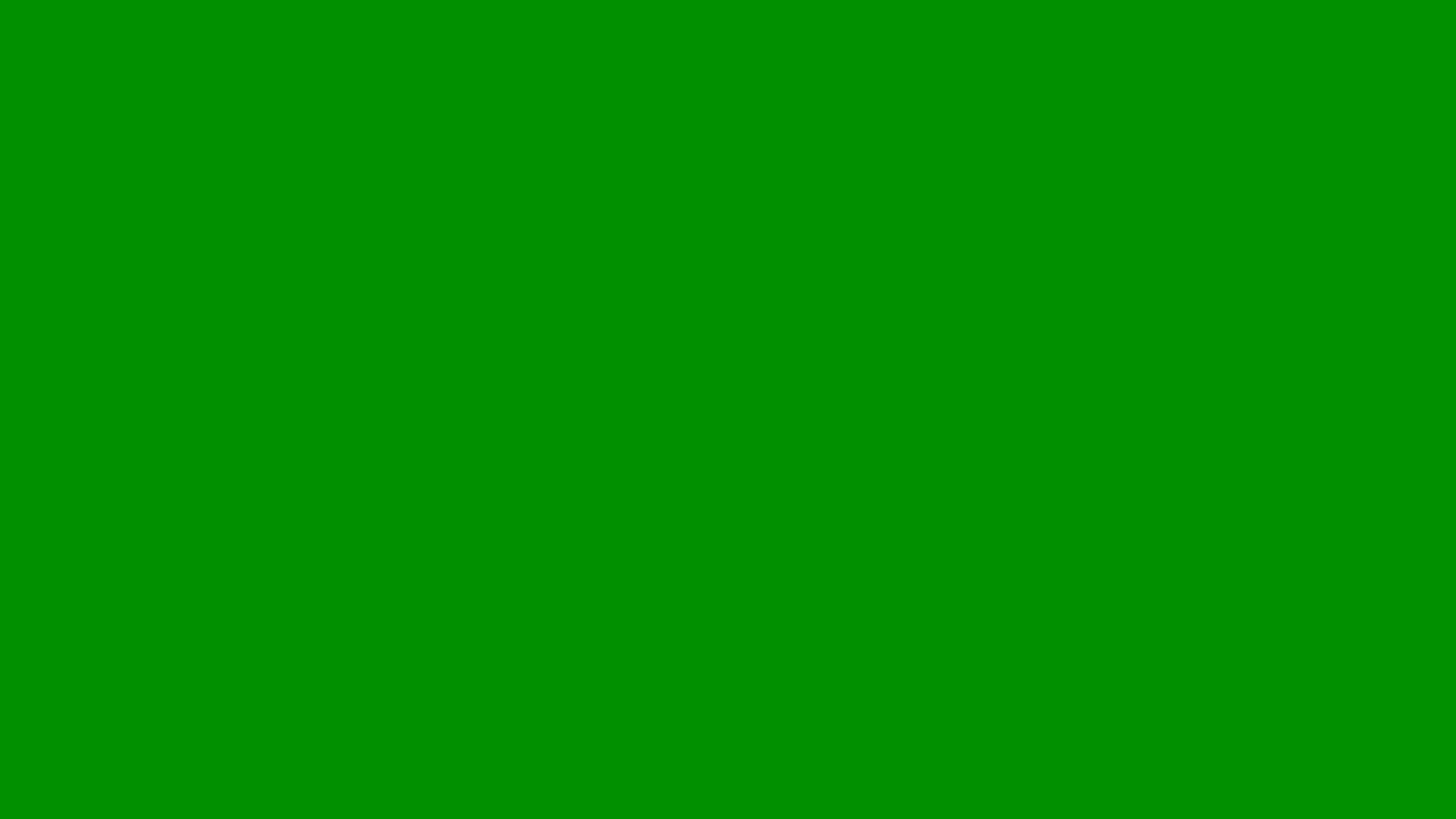 2560x1440 Islamic Green Solid Color Background