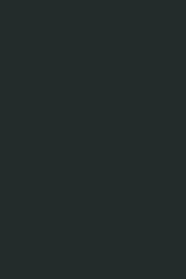 640x960 Charleston Green Solid Color Background