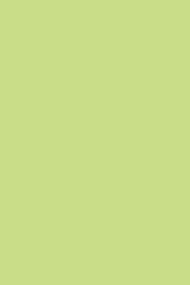 640x960 Medium Spring Bud Solid Color Background