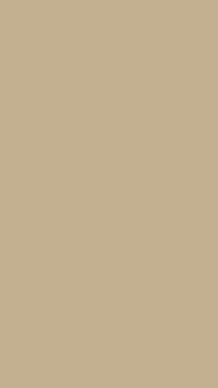 750x1334 Khaki Web Solid Color Background