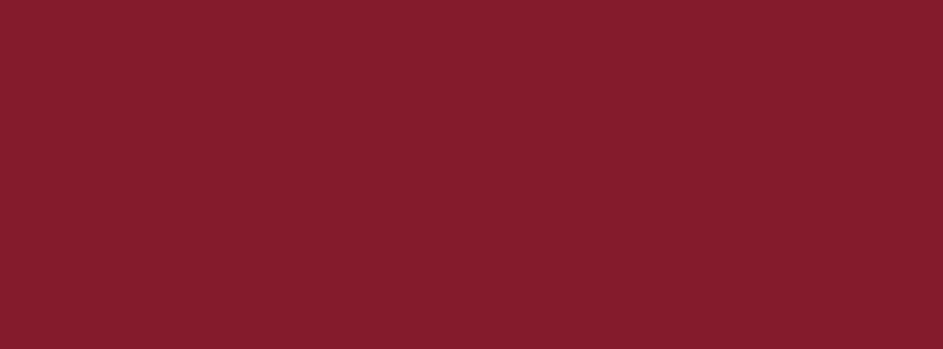 851x315 Antique Ruby Solid Color Background