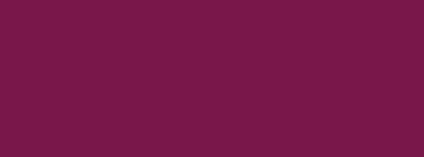 851x315 Pansy Purple Solid Color Background