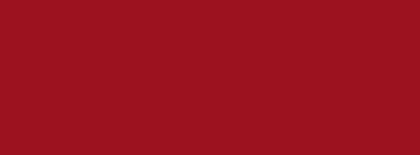 851x315 Ruby Red Solid Color Background