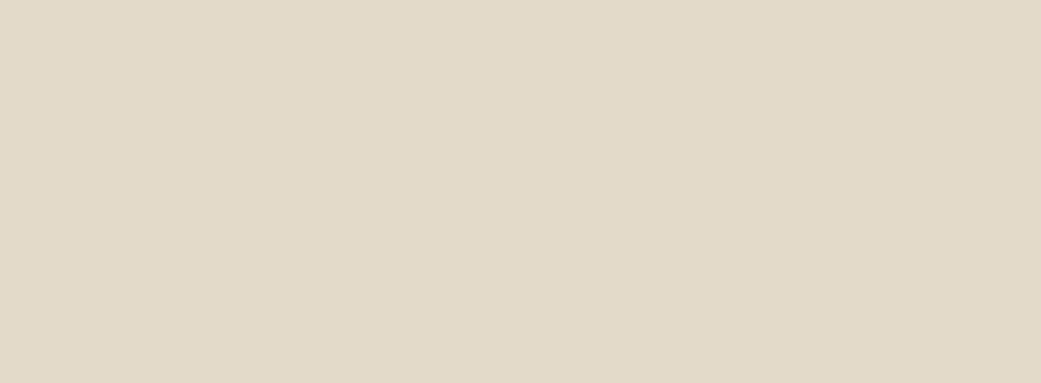 Bone Solid Color Background
